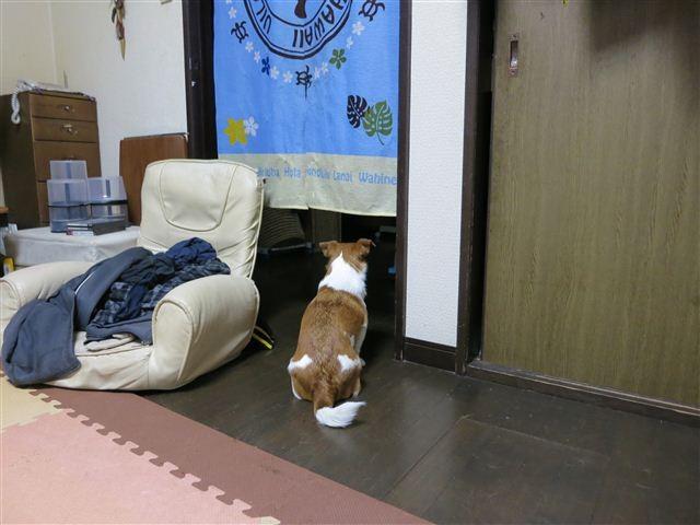 f:id:yasukazu01:20130327183925j:image