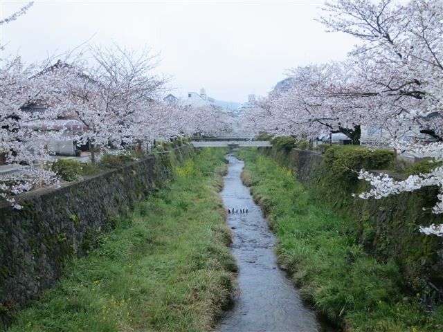 f:id:yasukazu01:20130328061119j:image