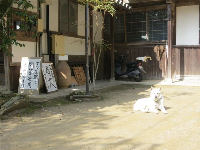 f:id:yasukazu01:20130328100142j:image