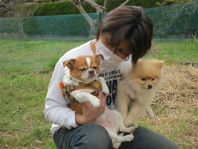 f:id:yasukazu01:20130331153028j:image