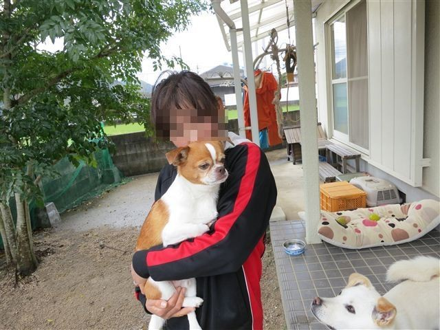 f:id:yasukazu01:20130407132740j:image