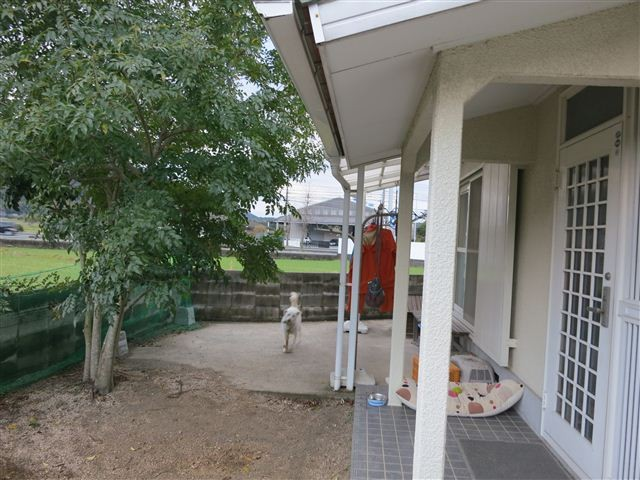 f:id:yasukazu01:20130407180546j:image