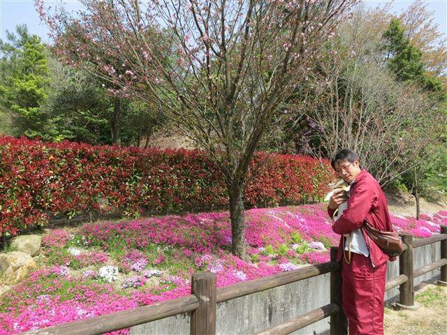 f:id:yasukazu01:20130409135440j:image