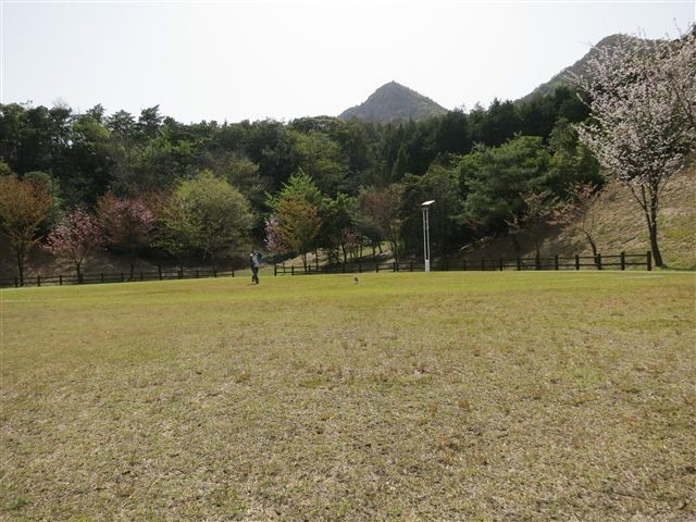 f:id:yasukazu01:20130409142528j:image