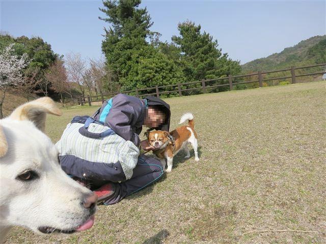 f:id:yasukazu01:20130409143209j:image