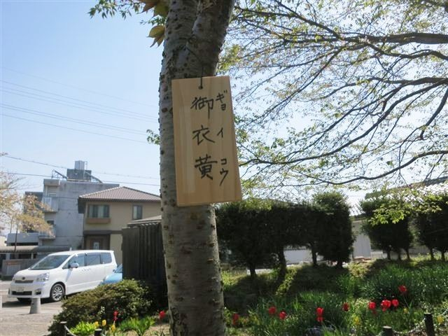 f:id:yasukazu01:20130413095703j:image