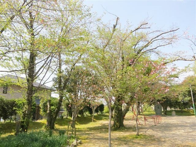 f:id:yasukazu01:20130413095751j:image