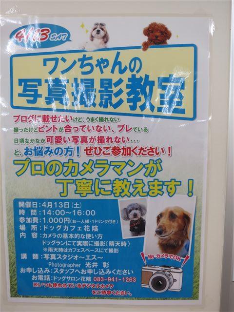 f:id:yasukazu01:20130413160217j:image