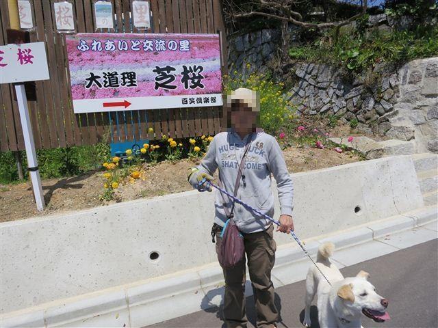 f:id:yasukazu01:20130419115407j:image
