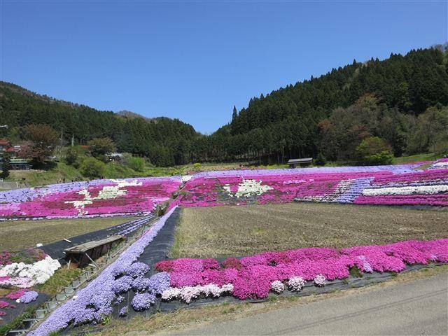 f:id:yasukazu01:20130419120225j:image