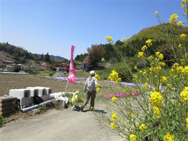 f:id:yasukazu01:20130419120658j:image