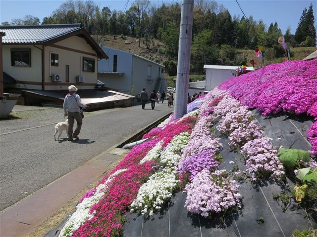 f:id:yasukazu01:20130419121056j:image