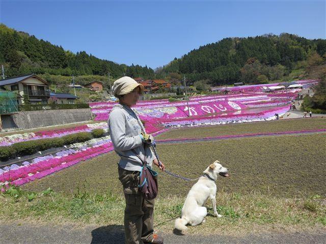 f:id:yasukazu01:20130419121234j:image