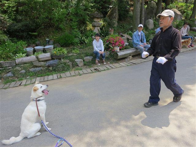 f:id:yasukazu01:20130428111628j:image