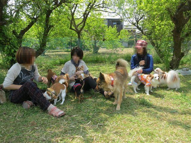 f:id:yasukazu01:20130428123156j:image