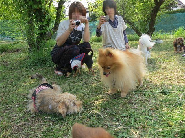 f:id:yasukazu01:20130428151144j:image