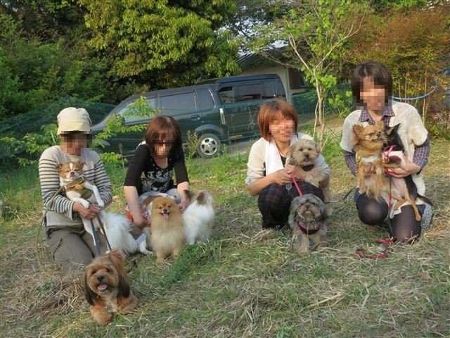 f:id:yasukazu01:20130428165010j:image