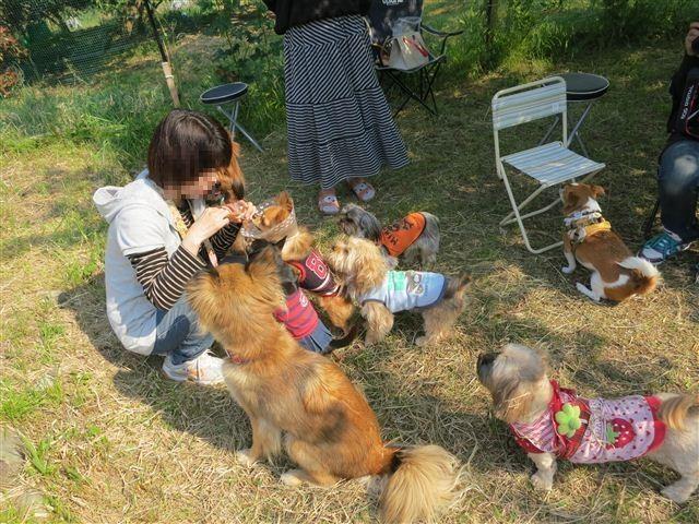f:id:yasukazu01:20130505153133j:image