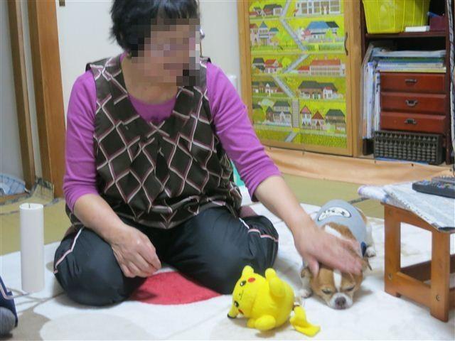 f:id:yasukazu01:20130506153904j:image