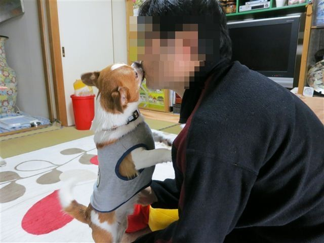 f:id:yasukazu01:20130506155750j:image