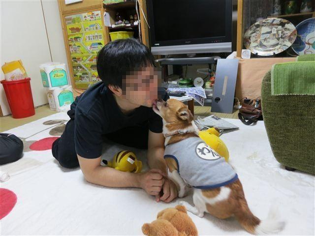 f:id:yasukazu01:20130506162805j:image