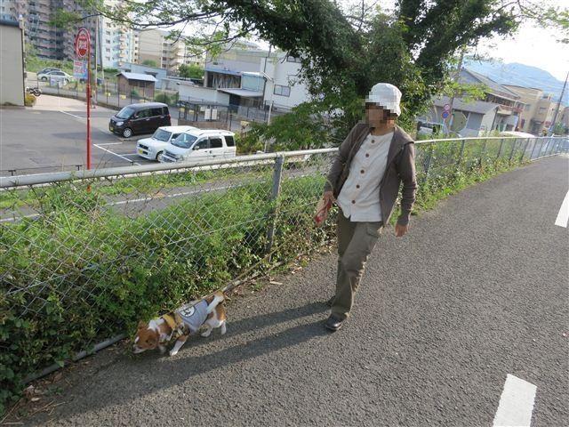 f:id:yasukazu01:20130506170140j:image