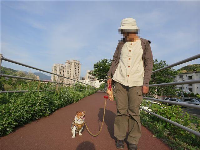 f:id:yasukazu01:20130506171337j:image