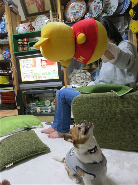 f:id:yasukazu01:20130506195734j:image