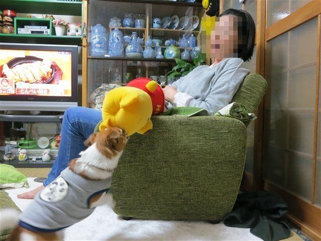 f:id:yasukazu01:20130506195819j:image