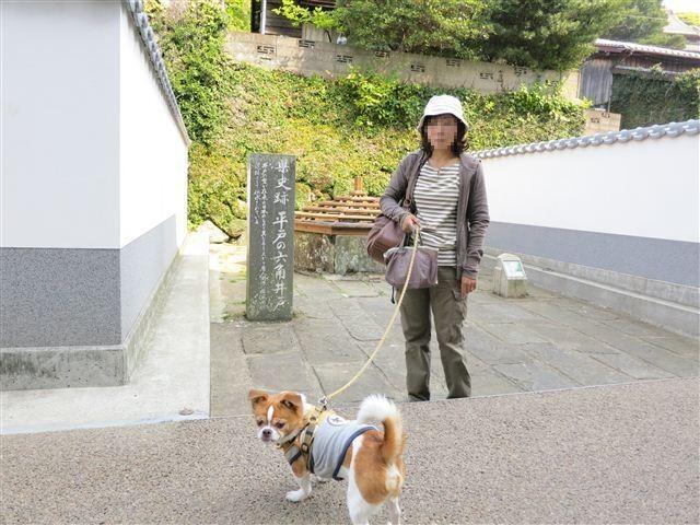 f:id:yasukazu01:20130507093611j:image