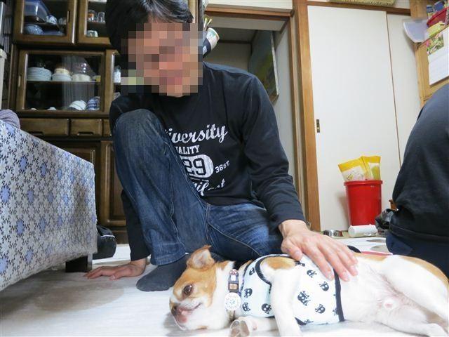 f:id:yasukazu01:20130507152334j:image