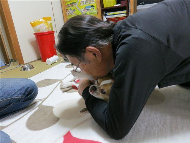 f:id:yasukazu01:20130507161016j:image