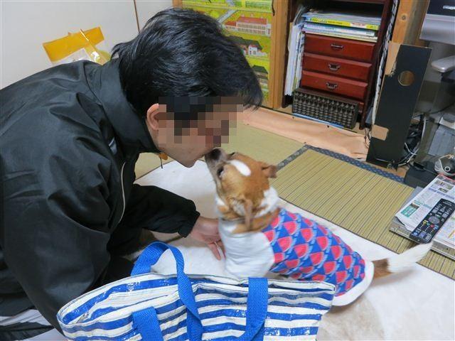 f:id:yasukazu01:20130508064005j:image