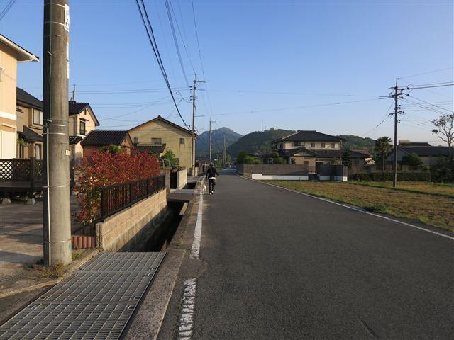 f:id:yasukazu01:20130521181448j:image