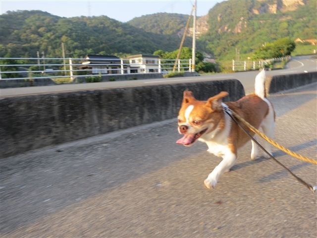 f:id:yasukazu01:20130521182830j:image
