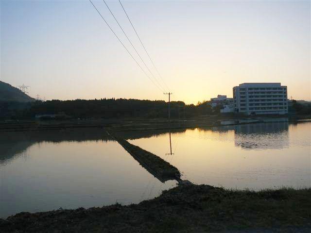 f:id:yasukazu01:20130521190147j:image
