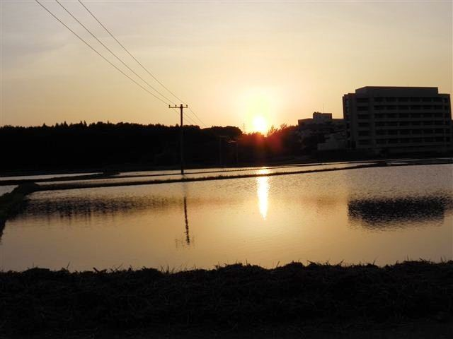 f:id:yasukazu01:20130525185551j:image