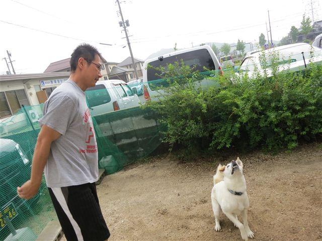 f:id:yasukazu01:20130530222240j:image
