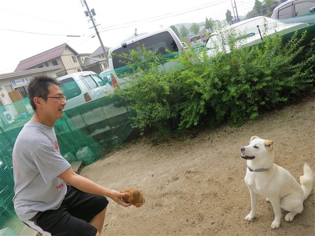 f:id:yasukazu01:20130530222527j:image