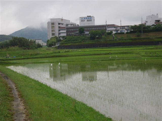 f:id:yasukazu01:20130603202332j:image