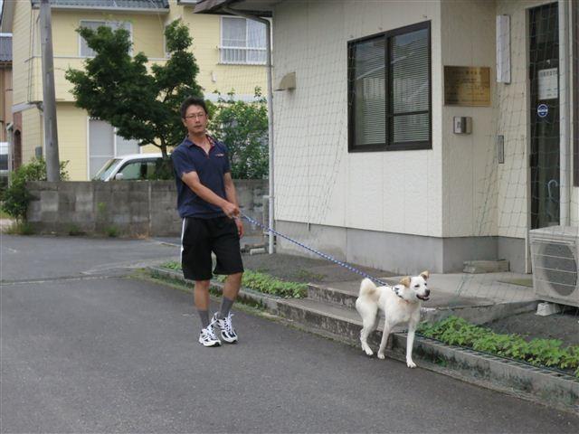 f:id:yasukazu01:20130615171109j:image