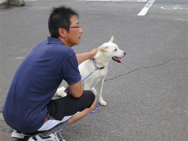 f:id:yasukazu01:20130615173343j:image