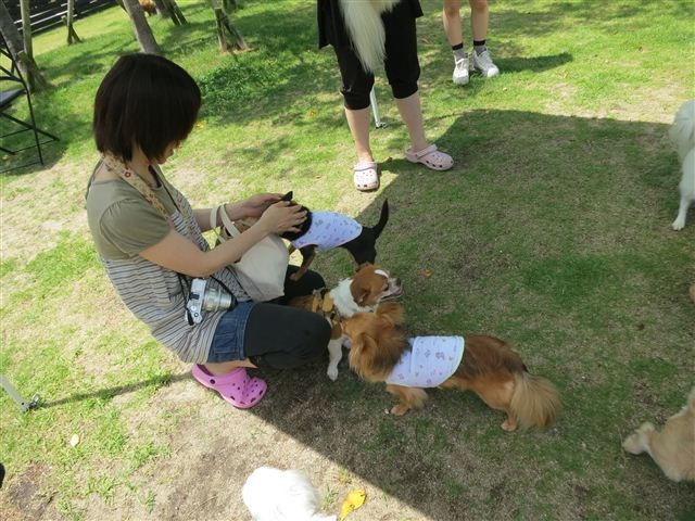f:id:yasukazu01:20130618204313j:image