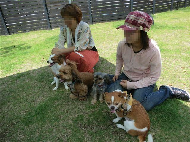 f:id:yasukazu01:20130619193827j:image