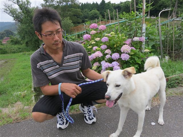 f:id:yasukazu01:20130625161008j:image