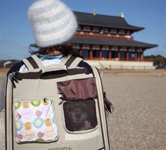 f:id:yasukazu01:20130628200728j:image