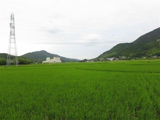 f:id:yasukazu01:20130705210234j:image