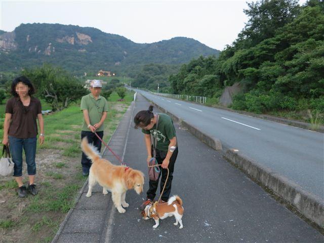 f:id:yasukazu01:20130711221850j:image