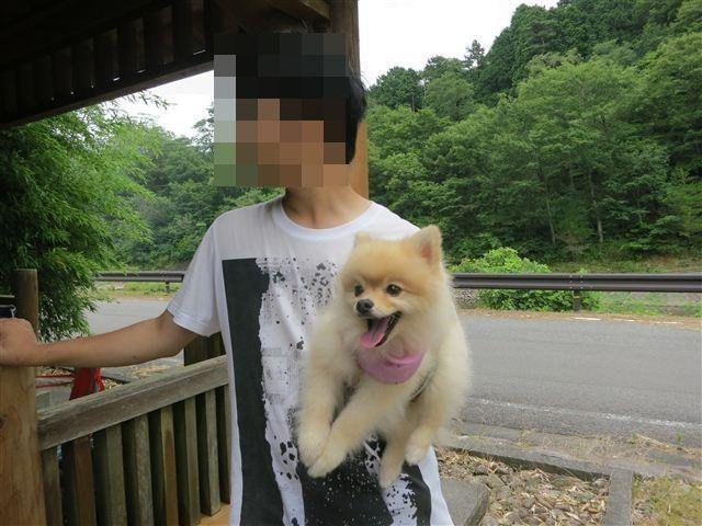 f:id:yasukazu01:20130717203531j:image