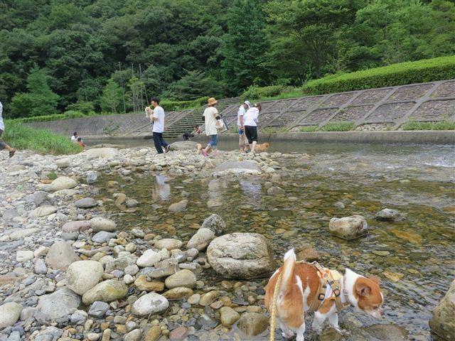 f:id:yasukazu01:20130718221404j:image